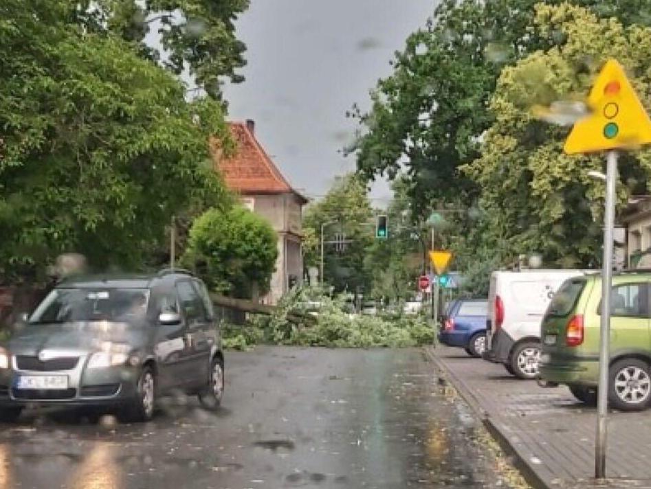 Burza w Kluczborku. Przewrócone drzewo przy ulicy Byczyńskiej.